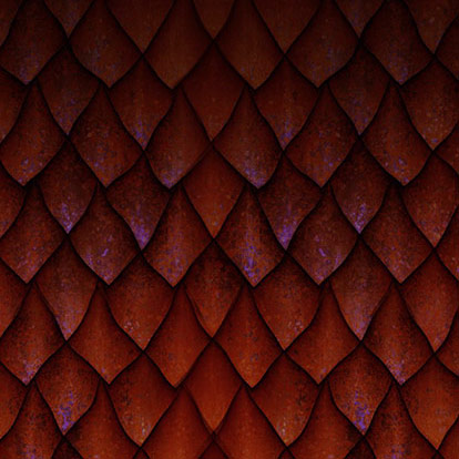 client cover photo dragonskin innis maggiore